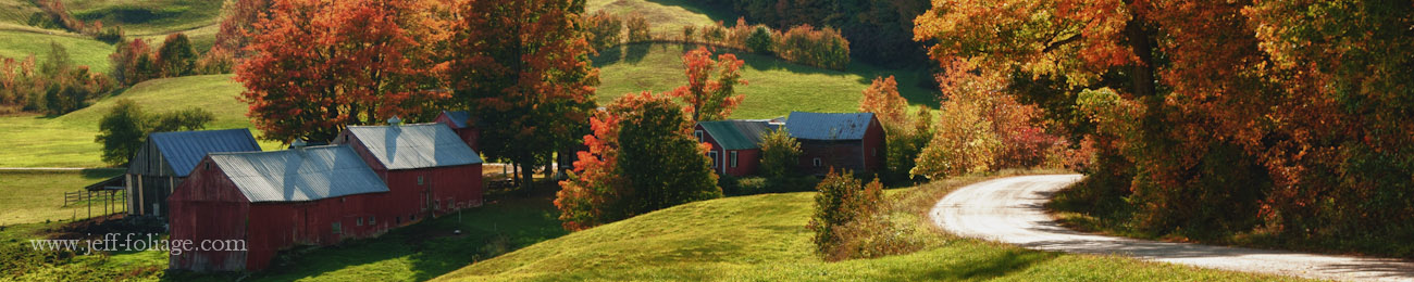 Fall foliage at the Jenne farm in Reading Vermont