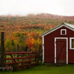 Shed with hill behind it covered in fiery maples ablaze