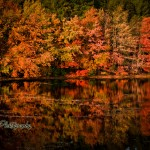 Rhode Island pond reflecting fiery fall foliage