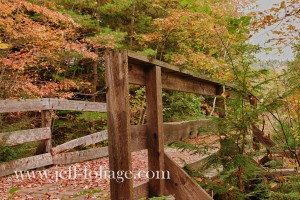 Short narrow gauge train bridge in October