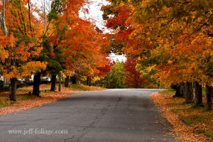 main street in New Salem MA with fall foliage lining both sides of the road