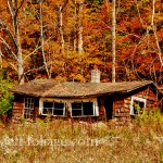 Old shack sags under the weight of the years with orange and red foliage in the trees above