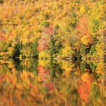 Jim Salge - Peak fall foliage at Lake Katherine New Hampshire