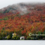 Michael-Strauch--taken-north-of-hardwick-vt-Sept-29