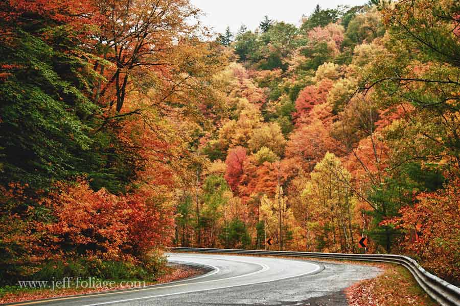Fall Gallery Massachusetts New England Fall Foliage