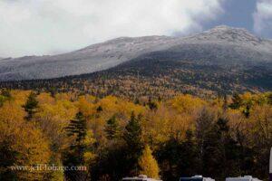 yellow foliage leading up to the alpine level of Mount Washington