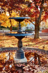 orange red and yellow fall foliage surrounds a small city Park