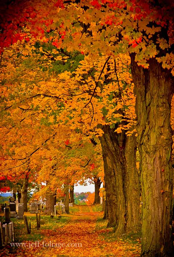 A New Hampshire Cemetery With Fall Foliage Colors As Far