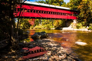"Swift River Covered Bridge, ""Autumn foliage New England"", ""Autumn foliage"", ""covered bridges"", ""fall color"", ""fall folage"", ""Fall Foliage"", ""Foliage trip"", ""images by Jeff Folger"", ""maple leaf"", ""New England color"", ""New England fall foliage"", ""New England"", ""tapestry of color"", ""New Hampshire Foliage"", Animals, antique, Autumn Travels, barn, Color, Cows, fall color, fall colors, Foliage, harvest, Landscape, leaf, leaves"