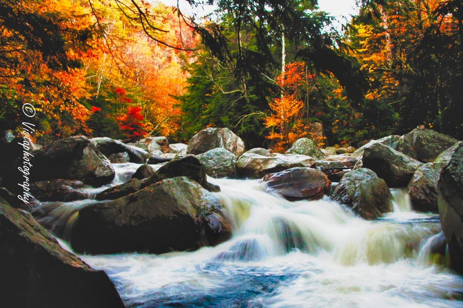 Vermont fall colors or mountain river