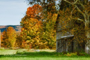 This hidden gem of a weathered Vermont barn has been standing for hundreds of years.