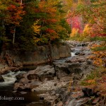 #Vistaphotography #JeffFolger, #JeffFoliage, Coos Canyon fall foliage