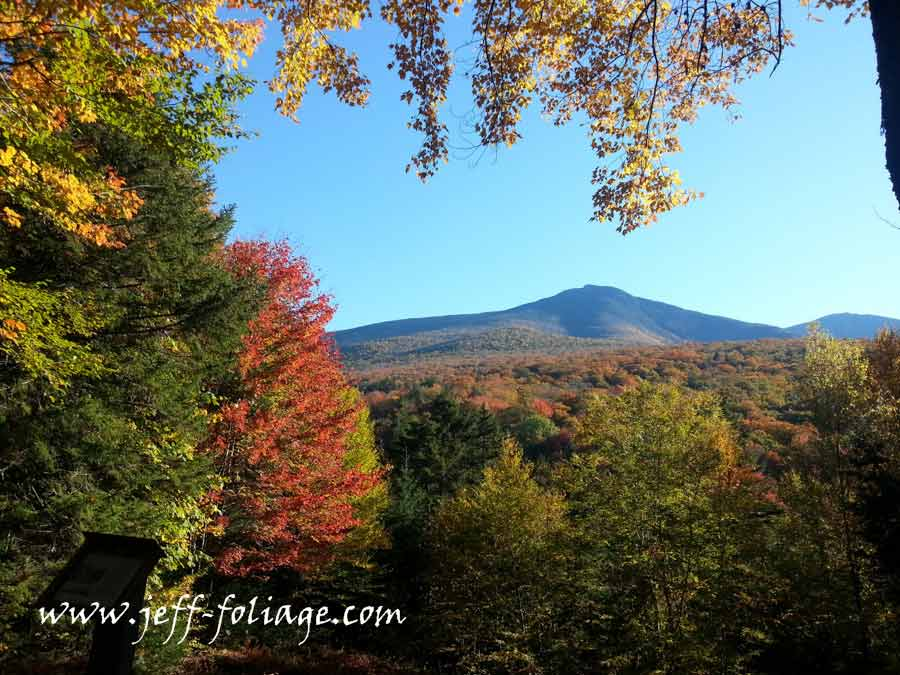 View of peak fall foliage in New England's Franconia state park. The trees and canopy were cut away to allow a view of Mount Lafayette