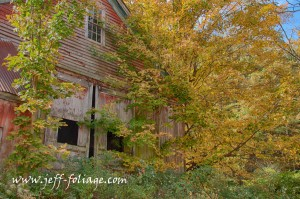 On 6 Oct 2012 in Central MA there was some strong color this year