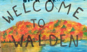 Walden fall foliage festival 29 Sept 2014