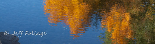 Golden fall colors reflection in Maine