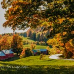 The Jenne Farm on 29 Sept and showing early strong fall foliage colors