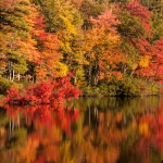 Chocorua pond with fall colors in digital