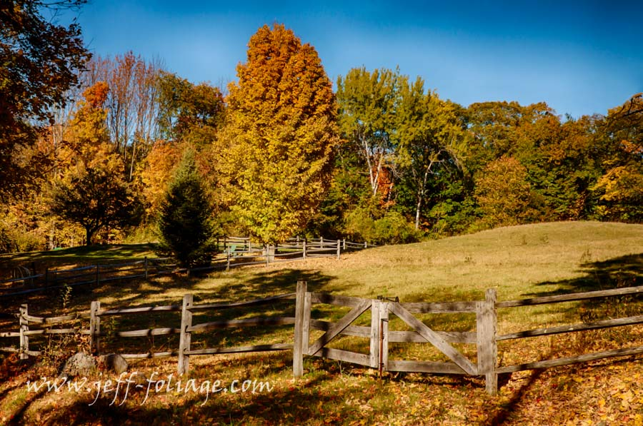 New Hampshire fall foliage and a rustic wood fence., #Vistaphotography, #Jefffolger