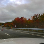 Better fall color on I-89