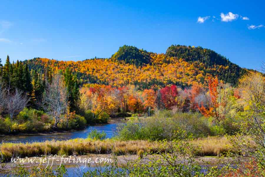 brightly colored New England fall foliage in northern New Hampshire with foliage update