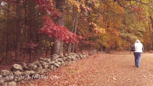 The stone wall heading to the back of the property