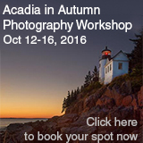 Acadia fall foliage workshop taught by master photographer and New England photographic guild member Jonathan Steele. The workshop is October 12-16 2016 click this link for more information http://jonsteelephotography.com/Acadia-Autumn-Photography-Workshop/