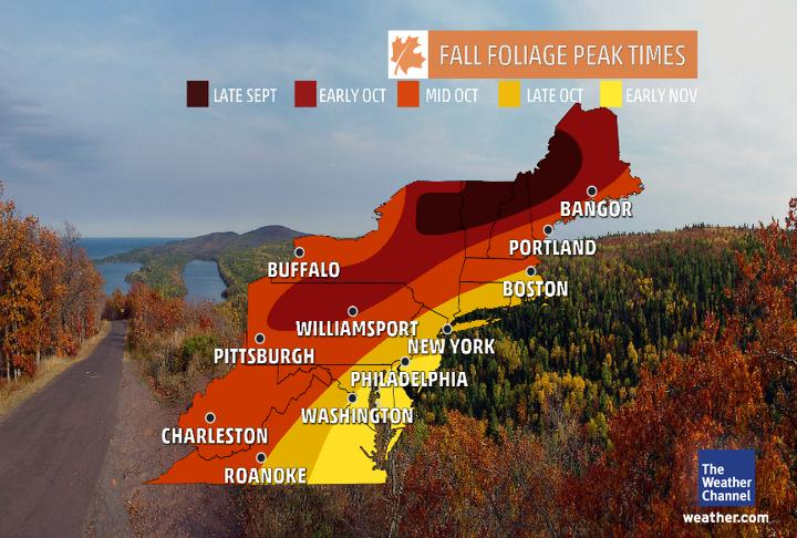 peak fall foliage basic rules