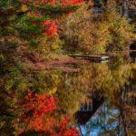 Fall colors on Chocorua river