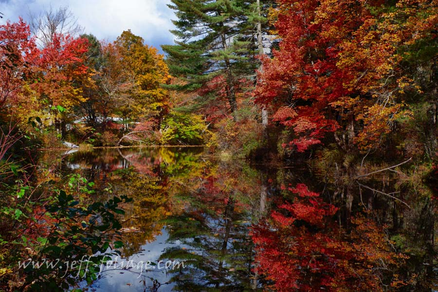 lots of fall reflections