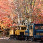 Crystal lake train depot