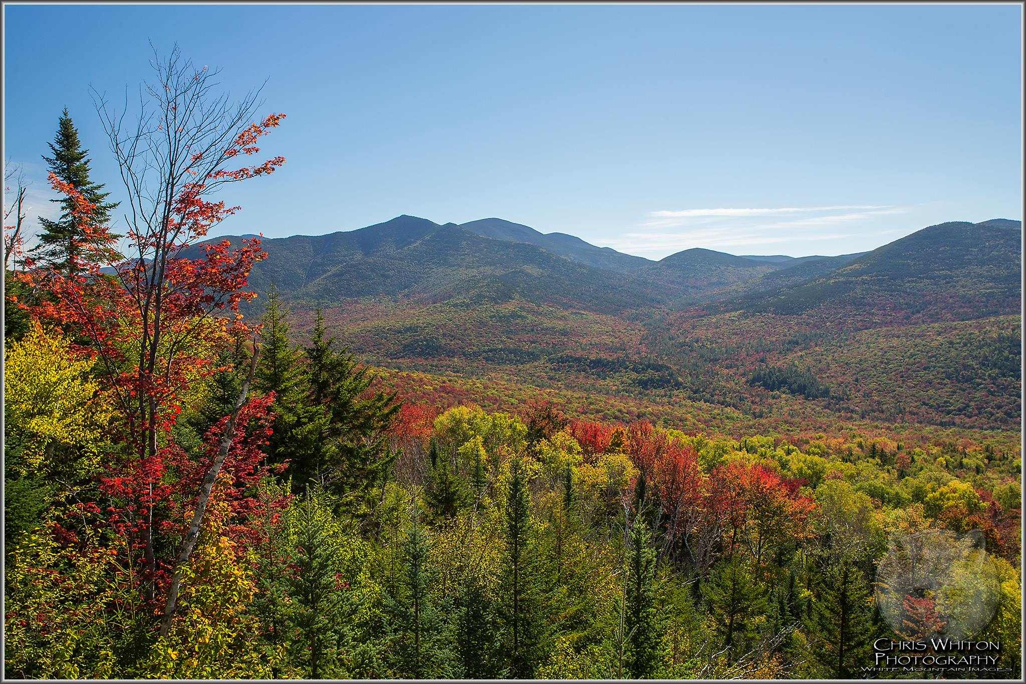 New England fall Foliage report