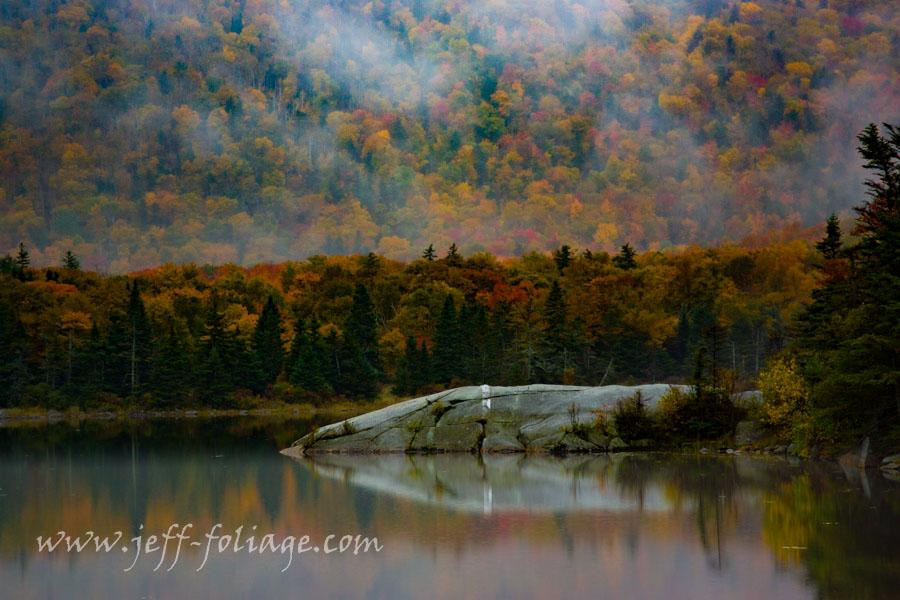 Foggy morning on beaver pond
