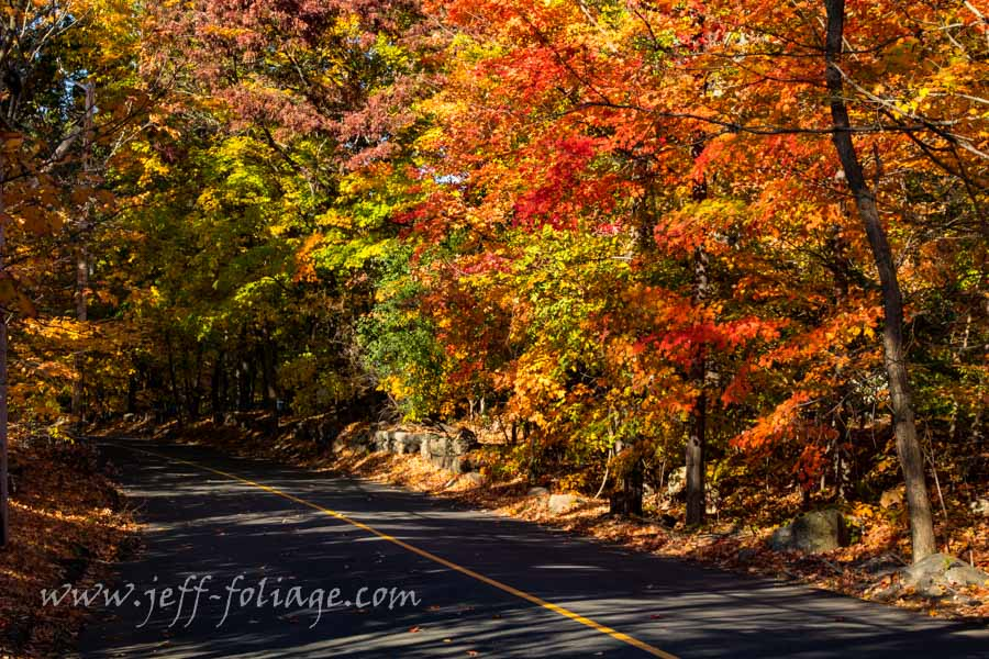 Scenic Byway Massachusetts fall foliage